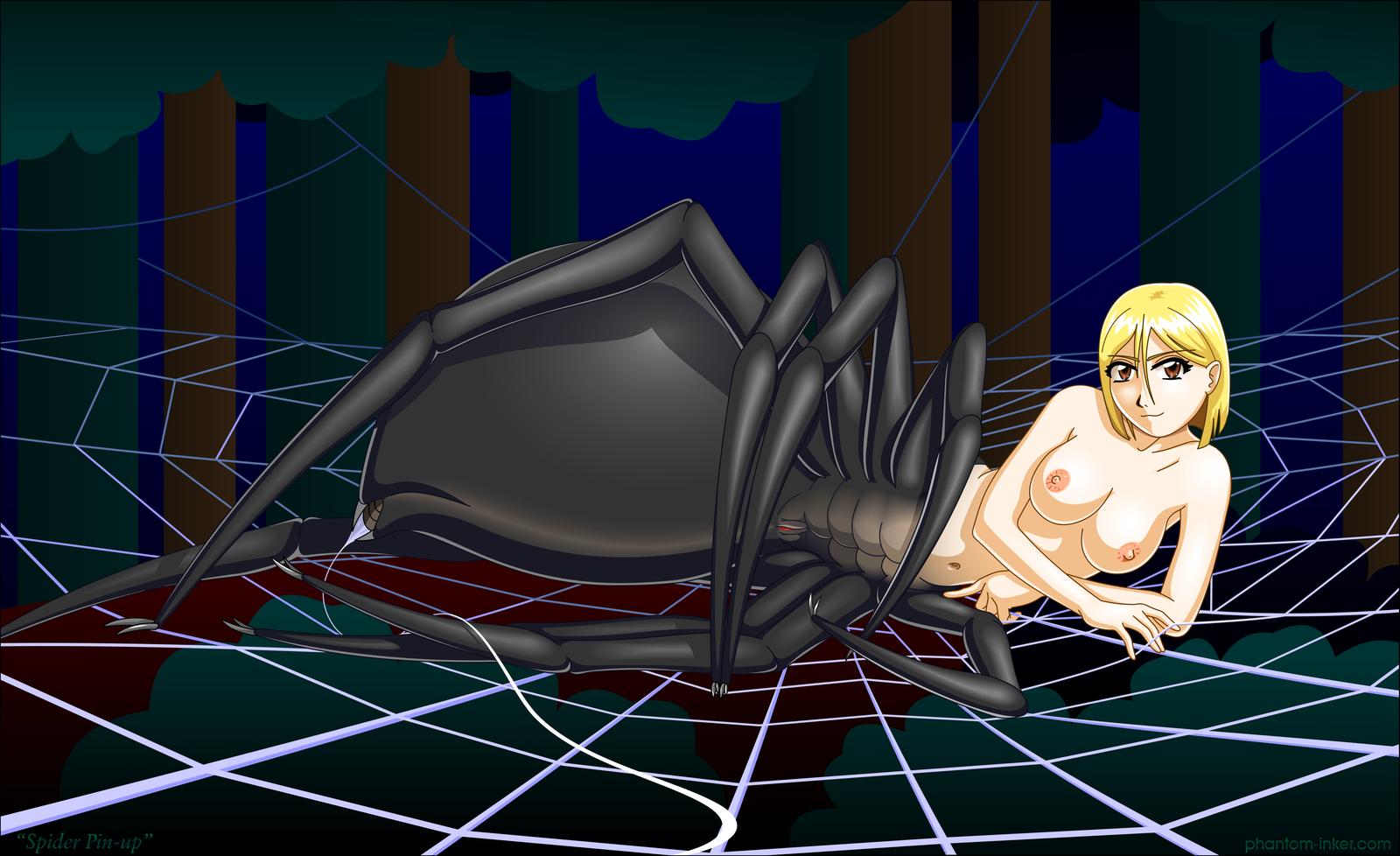 Weird Spider Sex